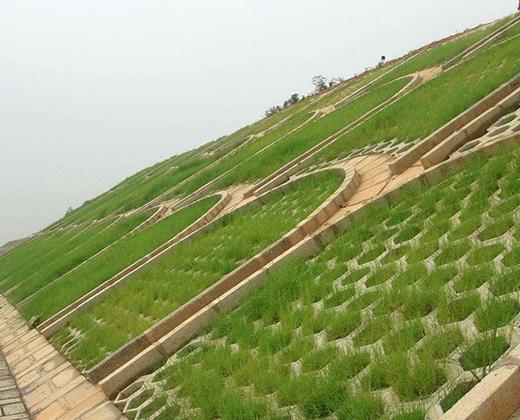 草坪护坡砖